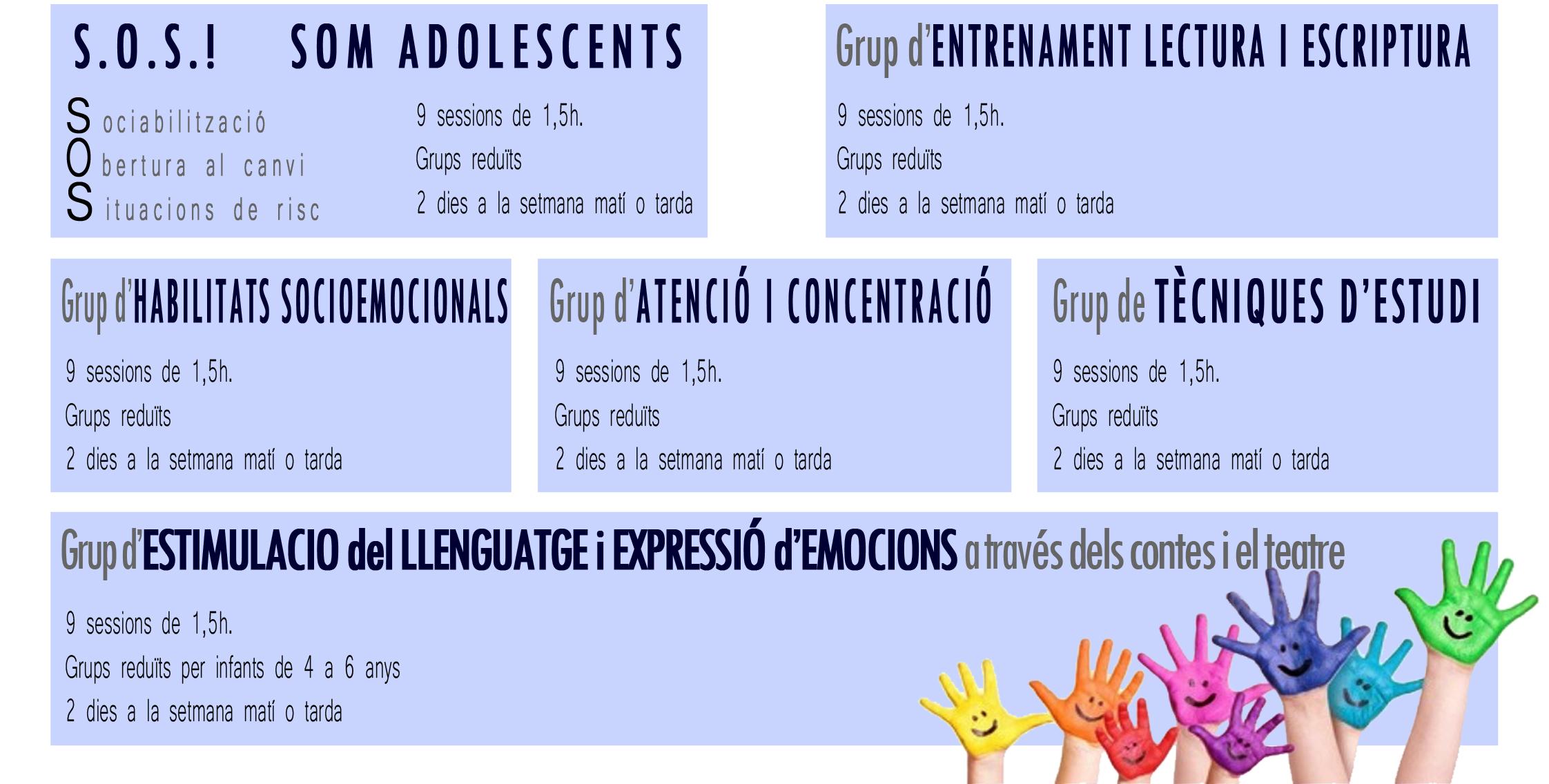 web_cursos estiu 2014 vic